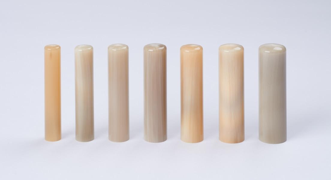 様々な色味が出ている8つのウシノツノ(白)の画像